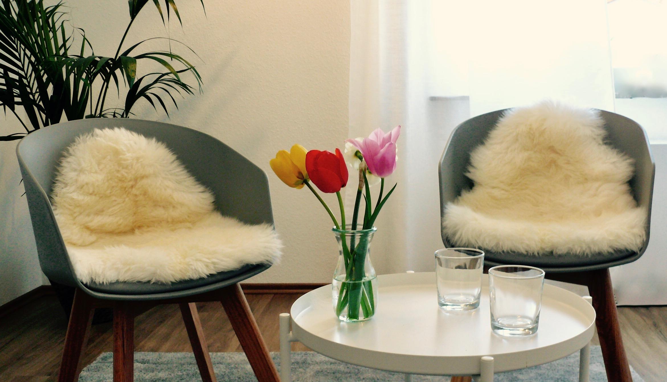 Sitzecke in der Praxis für Psychotherapie (HPG) und Systemisches Coaching in Weinheim